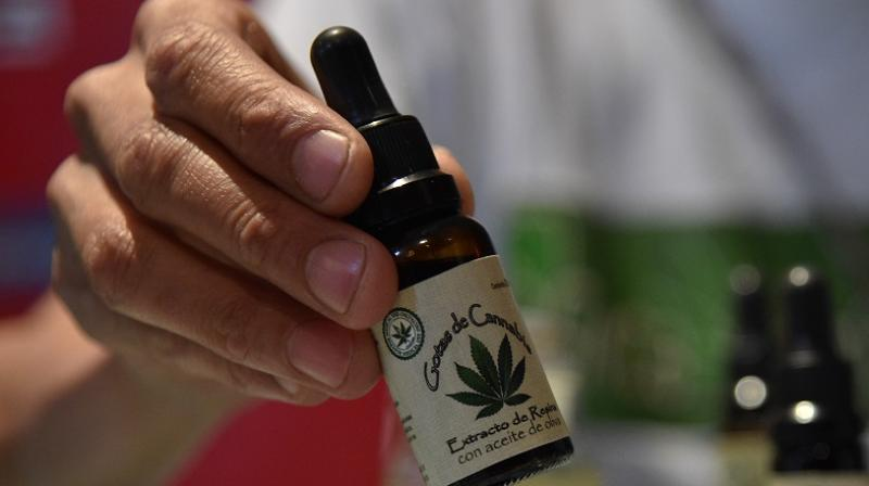 CBD's anti-inflammatory potential is essential for anti-ageing (Photo: AFP)