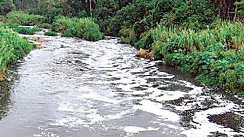 City-based environmentalists have noticed that the tanks in L Kota village of Vizianagaram district were encroached and dumped with toxic industrial waste.