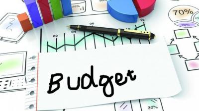 Pre-Budget meetings will begin from October 14 and continue till the first week of November, it said.