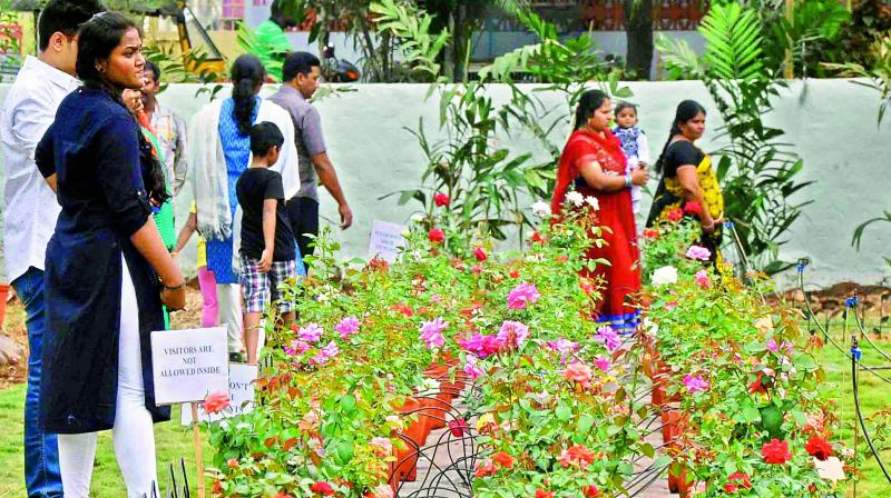 thirty sixth cochin flower show to start from friday