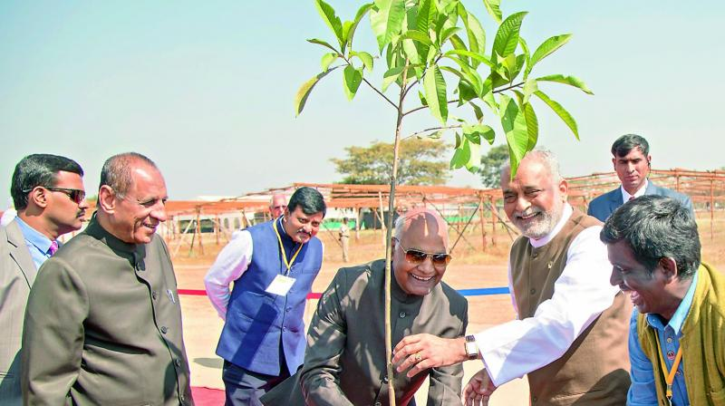 President Ram Nath Kovind plants the 1,00,000th sapling at Heartfulness Institute at Kanha Shantivanam on Monday. (Photo: DC)