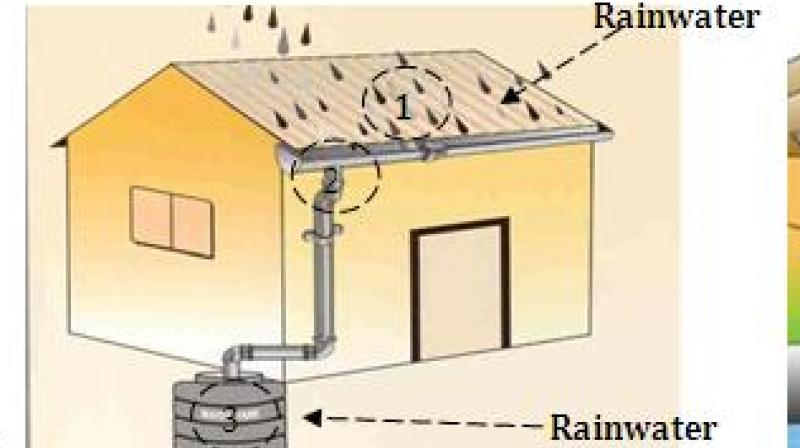 HMWSSB builds 567 rainwater harvesting pits