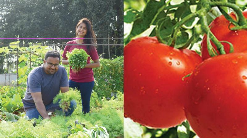 The Farmizen App was started by three founders — Sudaakeran Balasubramanian, Gitanjali Rajamani and Shameek Chakravarty.