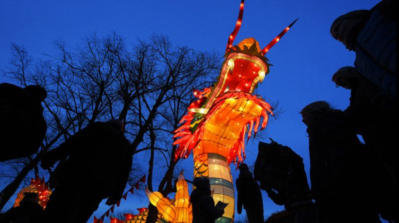 Chinese lantern artists created more the 300 different light sculptures and light installations for Magic light worlds in Germany. (Photos: AP)