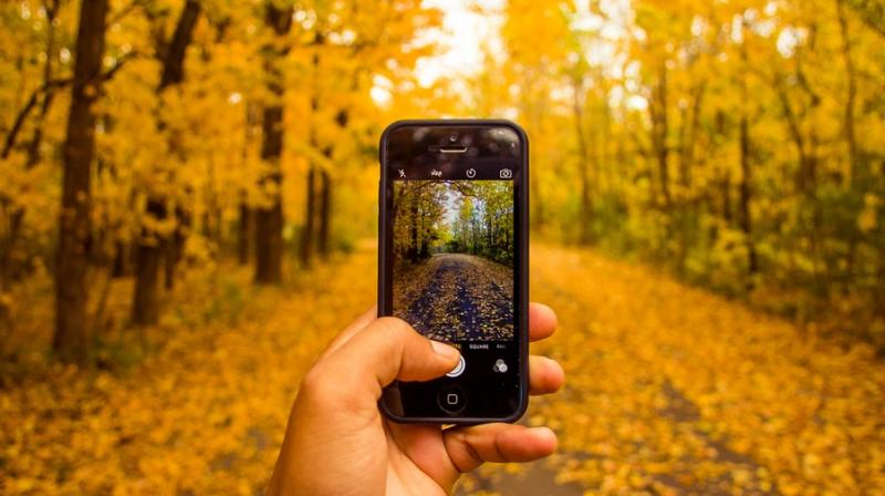 Image result for clicking pics