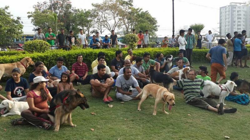 First Ever Dog Park been inaugurated in Kondapur
