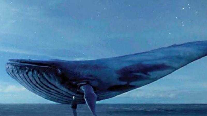 A sick suicide internet game called 'Blue Whale' that is being probed by Russian cops after being linked to 130 teen deaths.