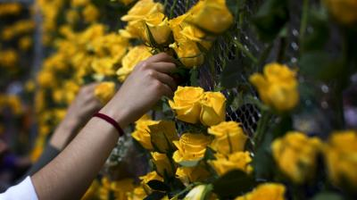 On the day of Sant Jordi, people give one another a rose or a book. The Generalitat in Plaça de Sant Jaume is open to the public and there is a large rose market in the palace and around it, where people can buy both books and roses. (Photo: AP)