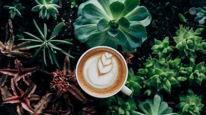 It is possible to overdo on caffeine with many heavy coffee drinkers surpassing recommended limit of 400 mg of caffeine per day. (Photo: Pexels)