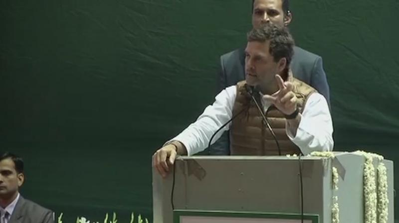 The Congress president also accused the government of eroding the authority of key institutions. (Photo: ANI | Twitter)