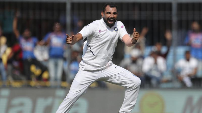 Shami and Ashwin shared a five wicket haul between them. (Photo: AP)