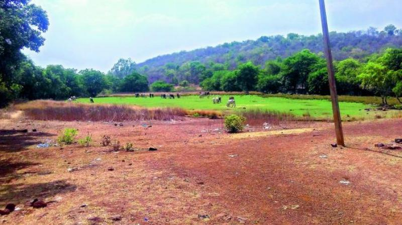 Telangana: Officials not carrying original land documents for survey