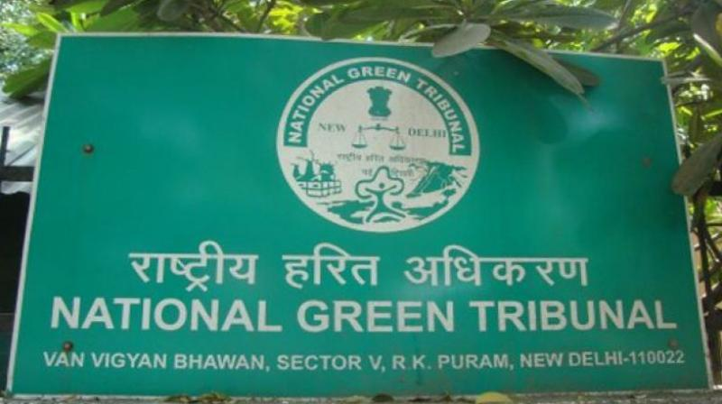 The supervisory committee will be headed by the additional secretary of the Union ministry of environment, forest and climate change and the additional chief secretary of the AP environment and forest ministry. (Representational Image)