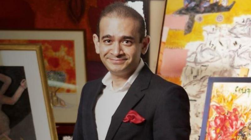 Nirav Modi seeks political asylum in UK, solicits British