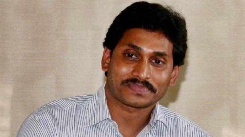 YSRC MPs to quit over special status to Andhra