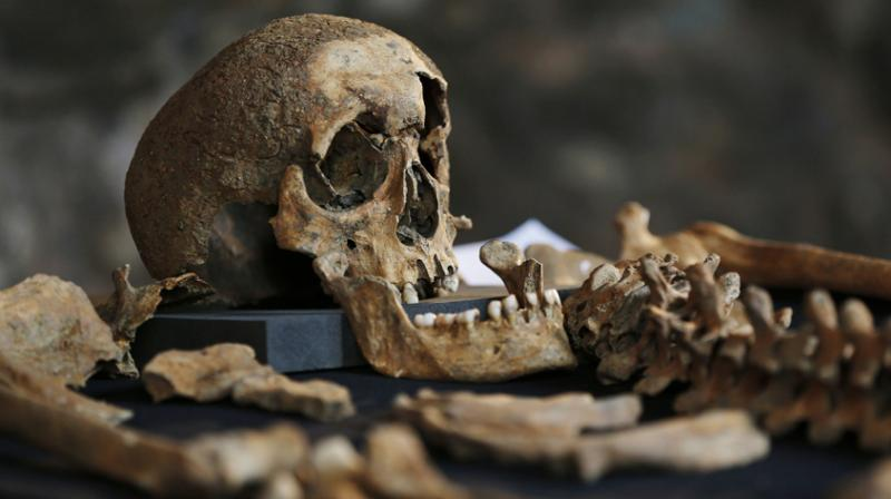 Black Death 'spread by humans not rats' - study reveals