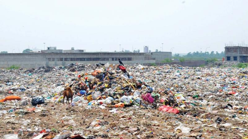 A view of the Tiruvottiyur garbage yard where the body was found.