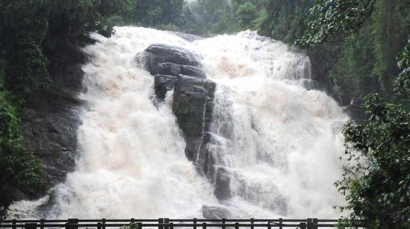 With unrelenting rains, Charpa waterfalls in Athirappally is in full flow on Monday