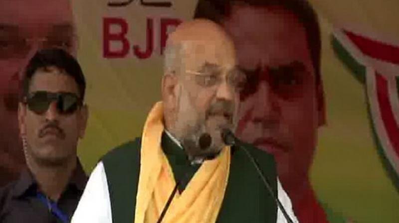 BJP president Amit Shah (Photo: ANI twitter)