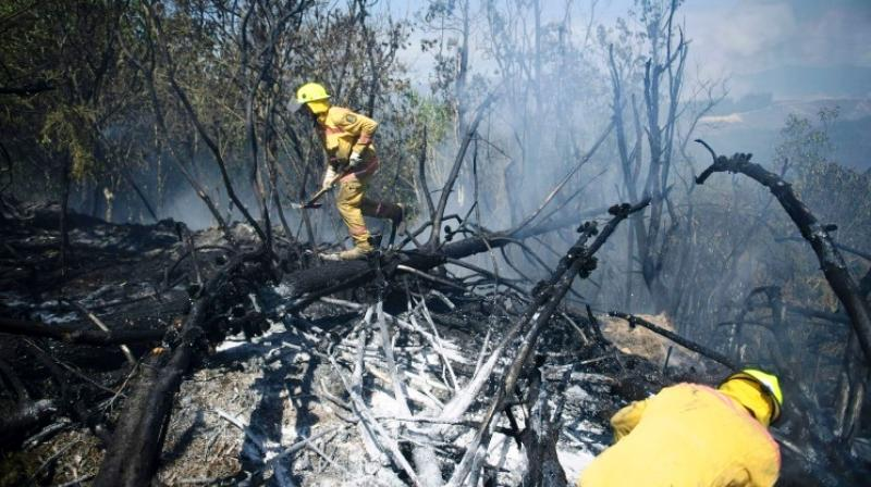 The main fire is believed to have been accidentally started by farm equipment last week amid scorching weather conditions. (Photo: AFP)