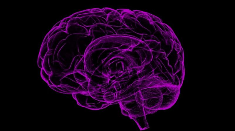 Scientists create tiny impant to deliver drugs deep into the brain. (Photo: Pixabay)