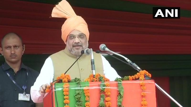 Showing confidence ahead of Haryana polls, due in October, Shah said, 'We are again going to form government in Haryana, with 2/3rd majority.' (Photo: ANI)