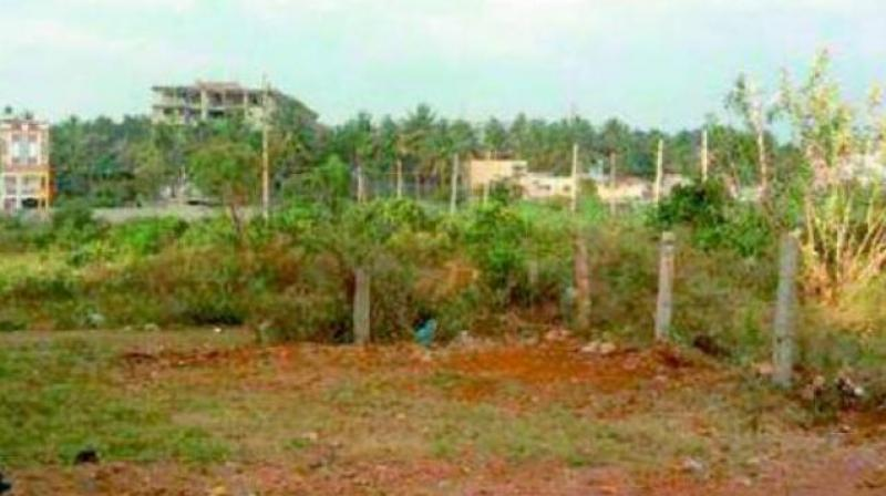 Forest authorities booked a case under relevant section of AP Forest Act, 1967 and took up investigation. (Representational Image)
