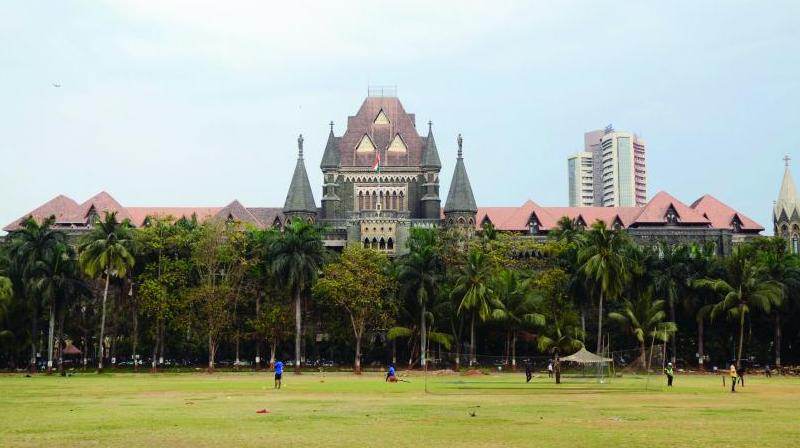 The petition also challenges the decision of BMC to implement the coastal road project and to quash and set aside the CRZ Clearance dated May 11, 2017. (Photo: File)