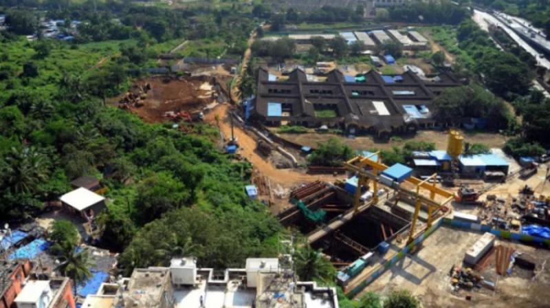 The Supreme Court on Monday restrained authorities from cutting anymore trees in Mumbai's Aarey to set up a Metro car shed. (Photo: ANI)
