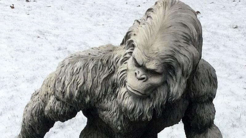 Himalayan study bears abominable results for Yeti enthusiasts
