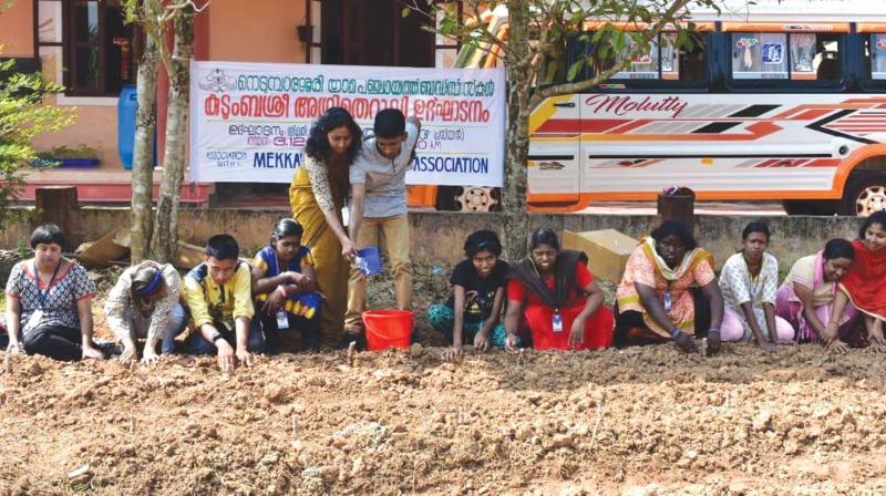 Students planting vegetable saplings at Nedumbassery Buds school.