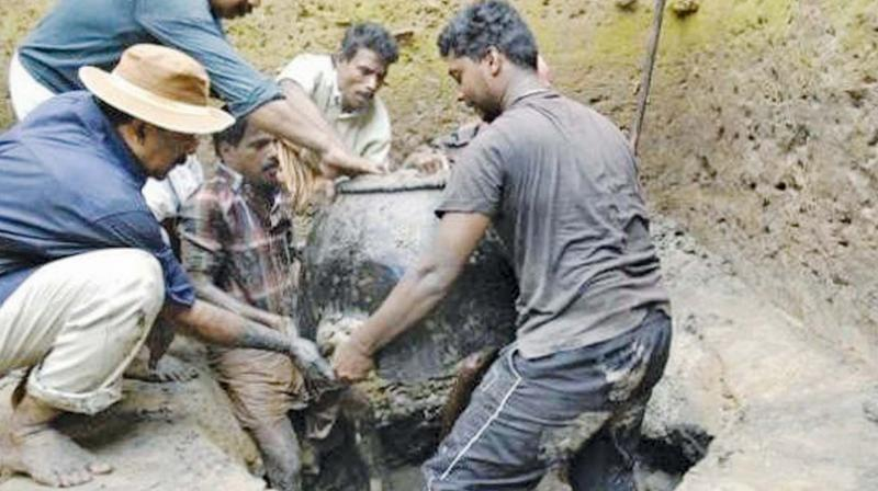 Prof Cherian(wearing hat) in the excavation process. (Photo: DC)