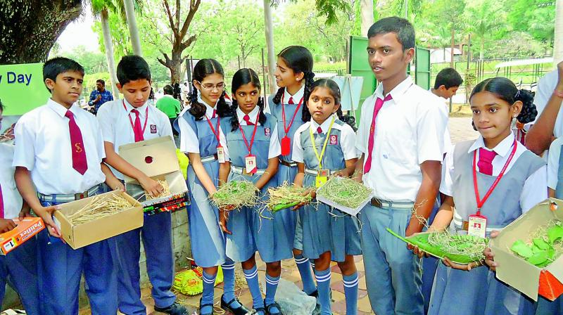 Students with wooden boxes for sparrows.