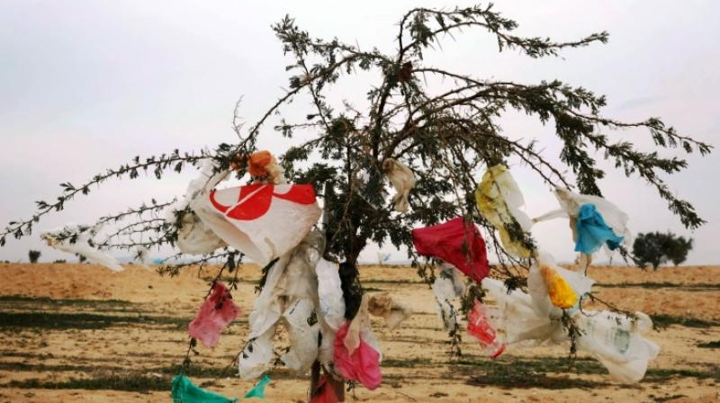 Faced with growing mounds of rubbish, Western countries don't have much choice right now other than to burn it or bury it. (Photo: AFP)