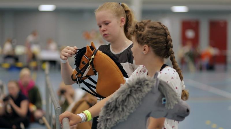 Finland has over 10,000 hobby-horse aficionados. (Photo: AP)