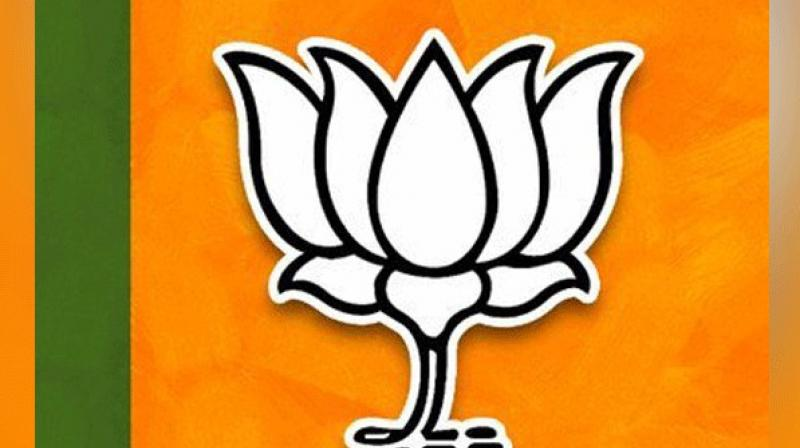 Through this app, people can directly register themselves and become active members of the BJP. (Photo: File)