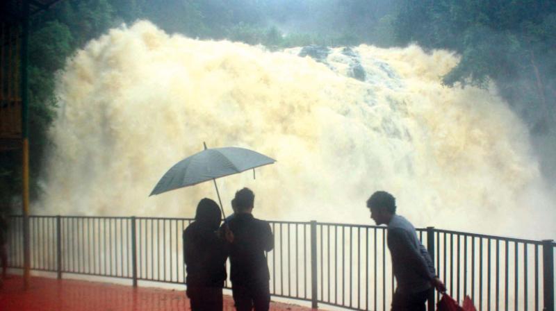 The overflowing Abbe Falls in Kodagu