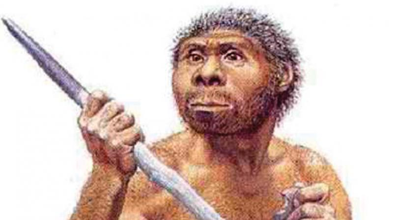 He said that very early in primate evolution, man learnt to use randomly scattered rocks to chop marrow and meat and later there was an attempt to shape the rock by hitting it with another to produce a sharp-edged achulian hand axe, which in turn was tied to a handle.