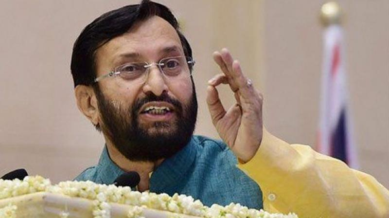 Union HRD Minister Prakash Javadekar said, 'The scheme will go a long way in tapping the talent pool of the country for carrying out research indigenously in cutting edge science and technology domains.' (Photo: File)