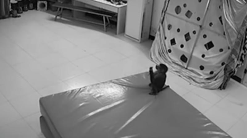 The CCTV footage of the room, which is now viral, showed the monkey sneaked up and place the orders. (Photo: Youtube screengrab)