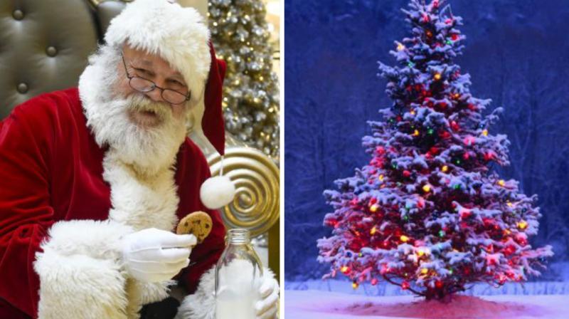 Ngt Junks Plea To Ban Christmas Trees Santa Claus Costume