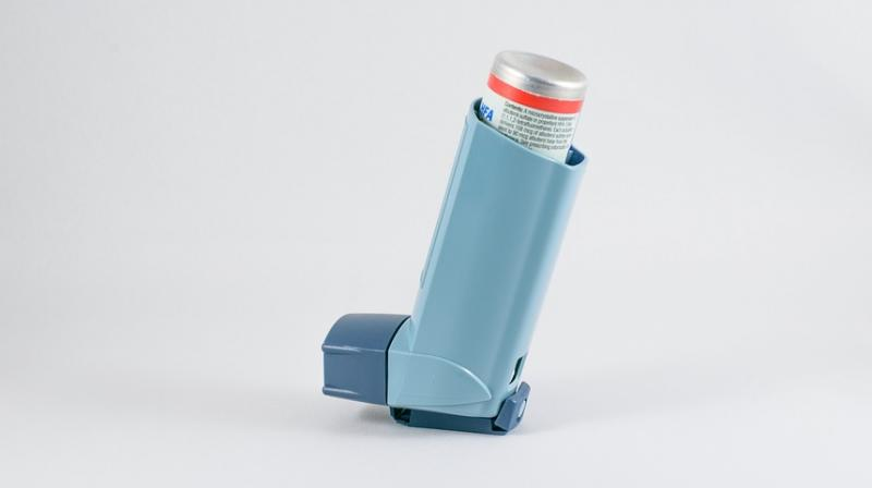 Scientists develop new treatment that could reduce asthma severity in kids. (Photo: Pixabay)