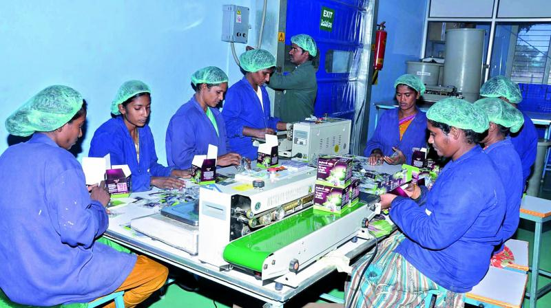 Manufacturing industries in the sectors of electronics, textile, food processing, toy making, etc started giving increasing preference to women. (Photo: DC)