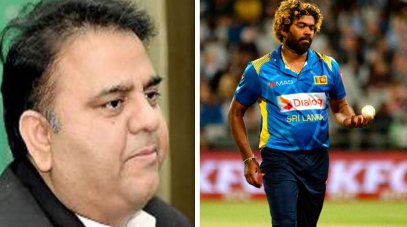 Sri Lanka Cricket (SLC) held a meeting with the players to inform them about the security arrangements before the selectors sit for the selection of squads. (Photo: AFP)