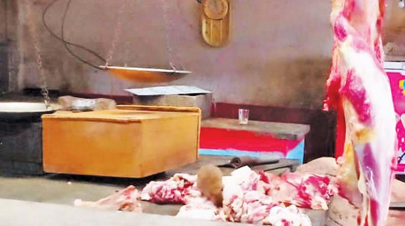 A rat nibbling at the meat in a beef stall in Coonoor. (Photo: DC)