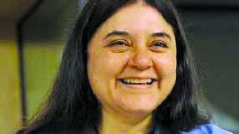 Maneka Gandhi, addressing a poll gathering in her parliamentary constituency said she categorises villages as per the votes registered in her favour. (Photo: File)