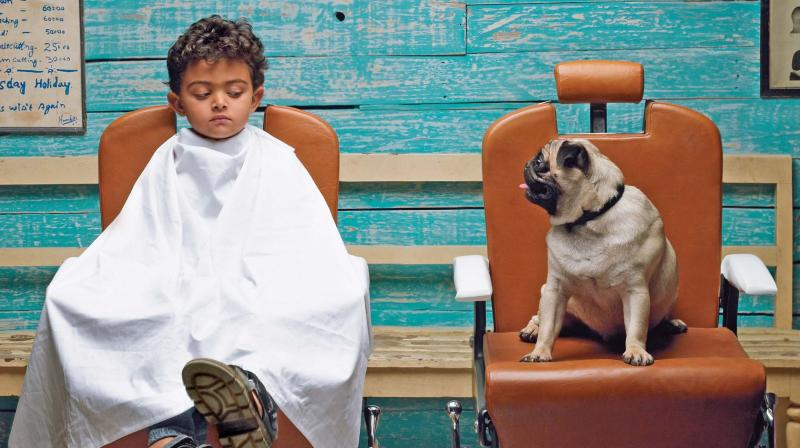 The iconic Hutch ad with the pug and the boy.