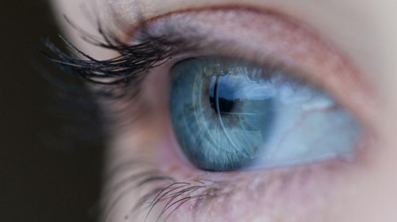 Retina Is That Part Of The Eye Where Final Vision Formed Way