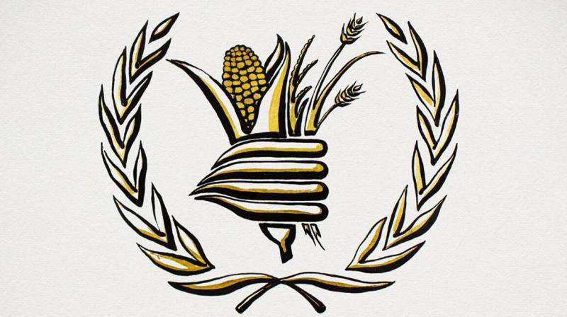 World Food Programme wins Nobel Peace Prize for efforts to combat hunger