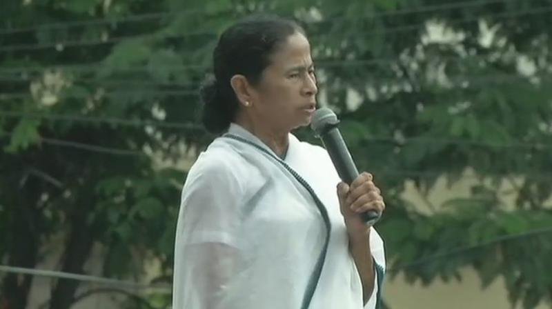 The West Bengal Chief Minister, also exuded confidence that her party will win all the 42 Lok Sabha seats. (Photo: ANI   Twitter)